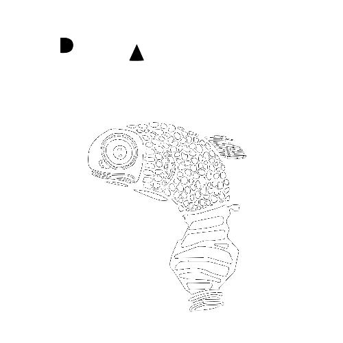 Plastic Free Project